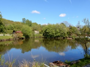 bryncoch farm lake 3